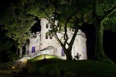 Castillo antiguo misterioso en el bosque oscuro profundo Fotos de archivo libres de regalías