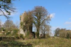 Castillo Cork Ireland de Ballyclogh Fotos de archivo