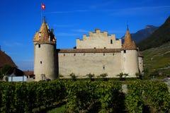 Castillo de Aigle Imagen de archivo libre de regalías