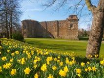 Castillo de Colchester en resorte Foto de archivo