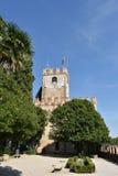 Castillo de Conegliano Fotografía de archivo