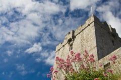 Castillo de Dunguire Foto de archivo