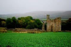 Castillo de Edlingham Fotos de archivo libres de regalías