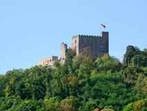 Castillo de Hambach Foto de archivo