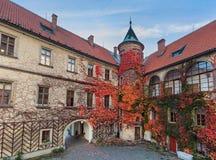 Castillo de Hruba Skala en el paraíso de Bohemia - República Checa imágenes de archivo libres de regalías