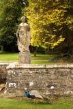 Castillo de Johnstown condado Wexford irlanda fotografía de archivo libre de regalías