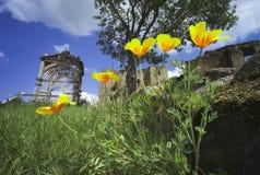 Castillo de Kenilworth Foto de archivo libre de regalías