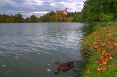 Castillo de Konopiste, República Checa - imagen del otoño Fotografía de archivo libre de regalías