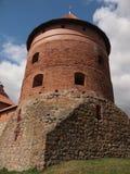 Castillo de la isla de Trakai (Lituania) Foto de archivo libre de regalías
