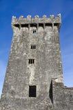 Castillo de la lisonja Fotos de archivo libres de regalías