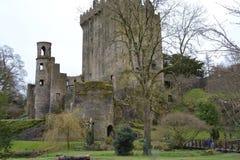 Castillo de la lisonja Fotografía de archivo libre de regalías