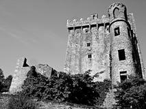 Castillo de la lisonja blanco y negro Fotos de archivo