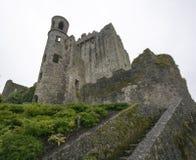 Castillo de la lisonja, condado Cork Ireland de la lisonja Imagen de archivo libre de regalías