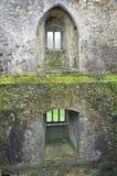 Castillo de la lisonja, Irlanda imagen de archivo