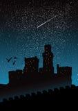 Castillo de la noche libre illustration