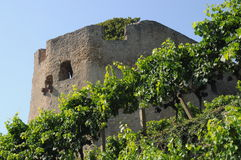 Castillo de Lichteneck Fotos de archivo