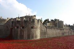 Castillo de Londres en el midle de la ciudad Imagen de archivo libre de regalías