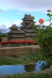 Castillo de Matsumoto con una rosa Imágenes de archivo libres de regalías