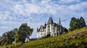 Castillo de Meggenhorn en Alfalfa, Suiza foto de archivo libre de regalías