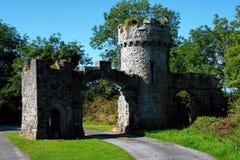 Castillo de Menlo, Irlanda Imagen de archivo libre de regalías