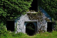 Castillo de Menlo, Irlanda Imagen de archivo