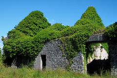 Castillo de Menlo, Irlanda Fotografía de archivo