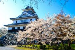 Castillo de Nagahama Fotografía de archivo