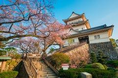 Castillo de Odawara Fotografía de archivo