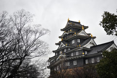 Castillo de Okayama Imagen de archivo