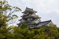 Castillo de Okayama fotografía de archivo