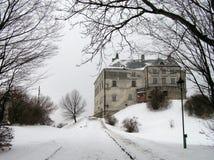 Castillo de Oleskiy Imagen de archivo libre de regalías
