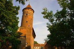 Castillo de Olsztyn Foto de archivo
