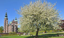 Castillo de Rosenborg Foto de archivo libre de regalías