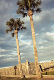Castillo de San Marcos. St. Augustine palms and Castillo de San Marcos stock photos