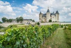 Castillo de Saumur con los viñedos en frente y uvas foto de archivo