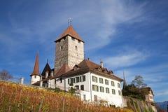 Castillo de Spiez Fotografía de archivo libre de regalías