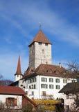 Castillo de Spiez Foto de archivo libre de regalías