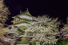 Castillo de Takashima Imagenes de archivo