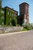 Castillo de Wawel en Kraków y los árboles florecientes blancos Imagen de archivo