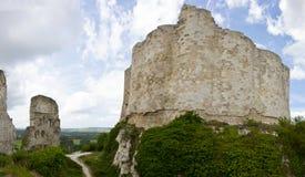 Castillo del corazón del león - panorama fotografía de archivo libre de regalías