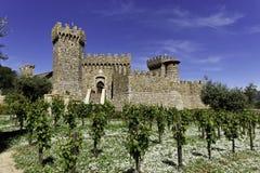 Castillo del lagar Imagen de archivo