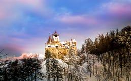 Castillo del salvado Imagen de archivo libre de regalías