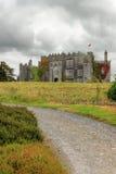 Castillo en Co.Offaly - Irlanda del birr. Fotos de archivo libres de regalías