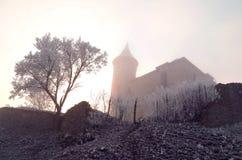 Castillo en el invierno - hora de Kuneticka Foto de archivo