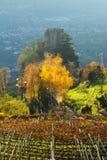 Castillo en el Sud el Tirol fotografía de archivo libre de regalías