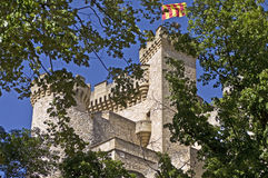 Castillo en la madera Fotografía de archivo