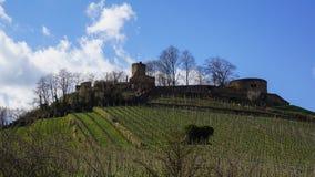 Castillo en ruina de la fortaleza de la colina del viñedo fotos de archivo