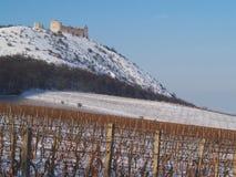 Castillo en una colina cerca de viñedos fotografía de archivo