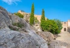 Castillo encima de una colina Fotos de archivo