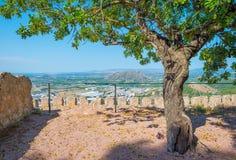 Castillo encima de una colina Fotos de archivo libres de regalías